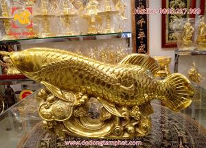 Tượng đồng cá chép ngậm xâu tiền xu mạ vàng 24k