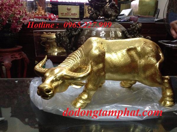 Tượng trâu bằng đồng mạ vàng với nét đẹp khỏe khoắn, sang trọng